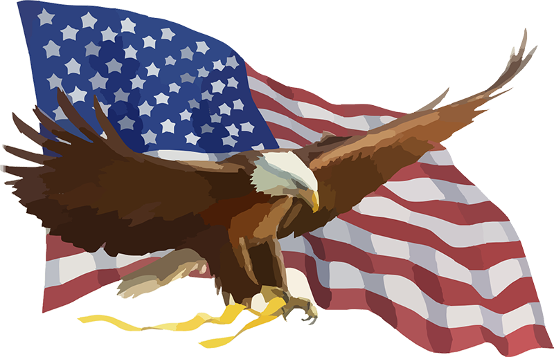 Eagle and Flag Logo